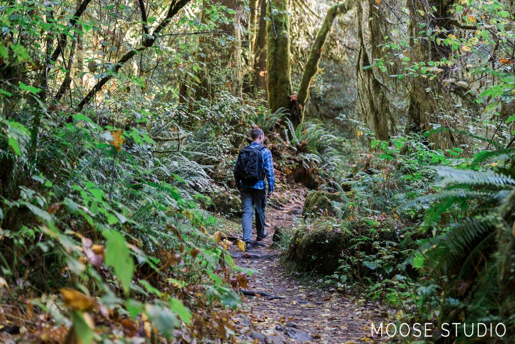 Adventure On The Road : Sweet Creek Trail
