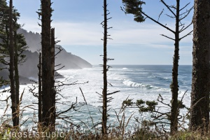 Adventure On The Road : The Oregon Coast