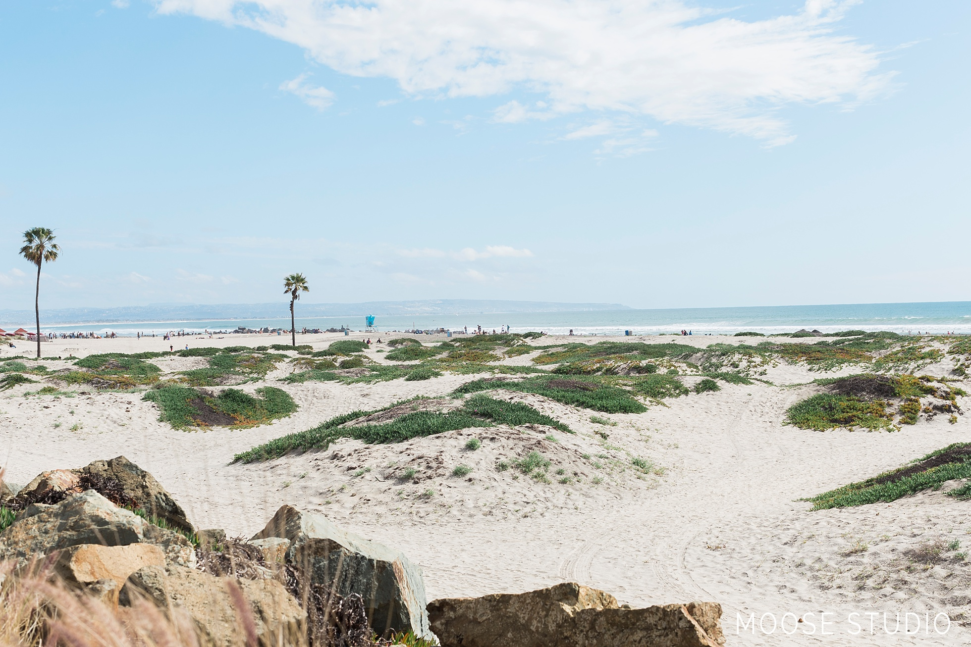 A Day On Coronado Island : What To Do, See and Eat