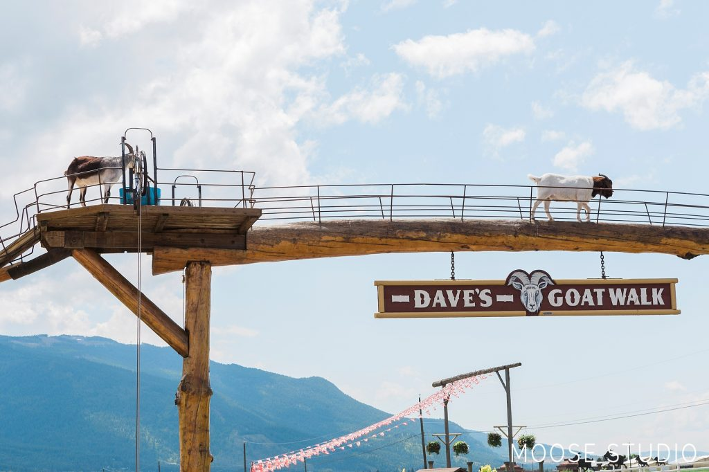 Dave's Goat Walk And The Log Barn in British Columbia, Canada